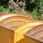 Skiphire Services in bognor-regis